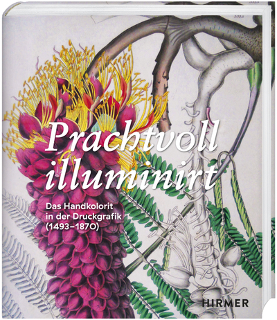 Cover für Prachtvoll illuminirt